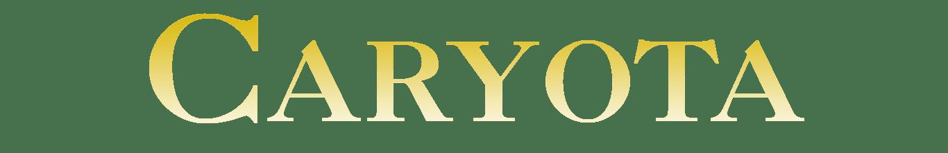 Type Caryota